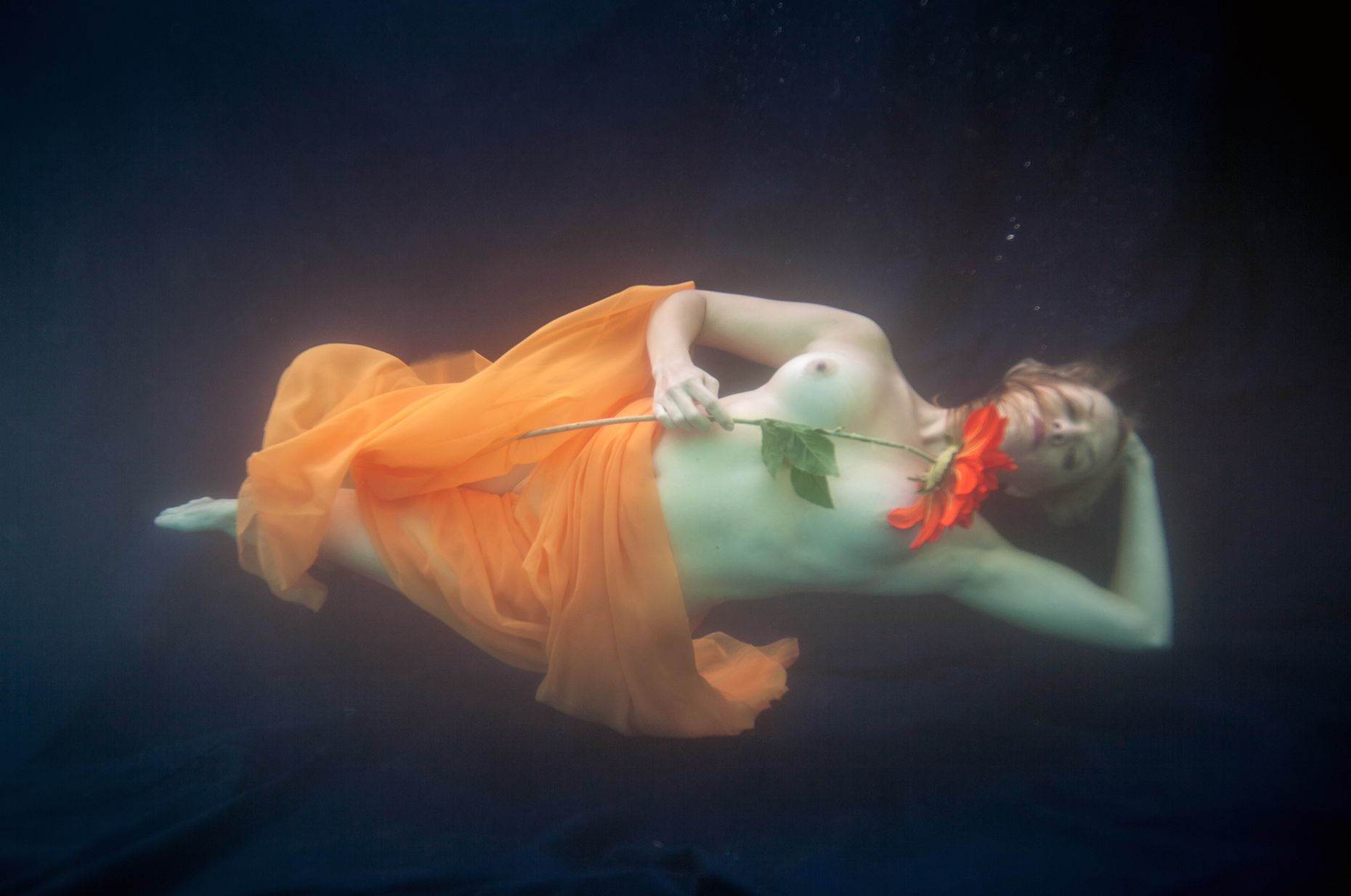 underwater fine art photograph of topless women holding large flower. Advertising photograph floating in the water sidewise. Editorial Portrait.